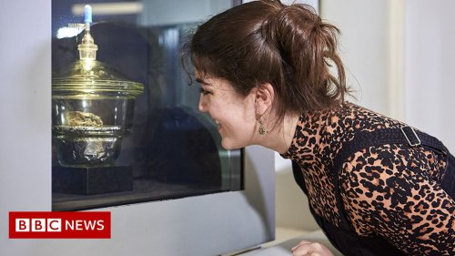 Winchcombe meteorite to go on public display