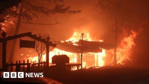 South Korea wildfires: Deadly blaze declared a national emergency