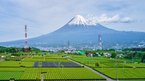 How technology is transforming Japan's agriculture