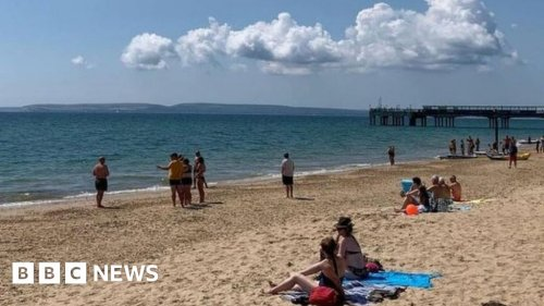 Bournemouth beach closed after 'large animal' spotted in sea