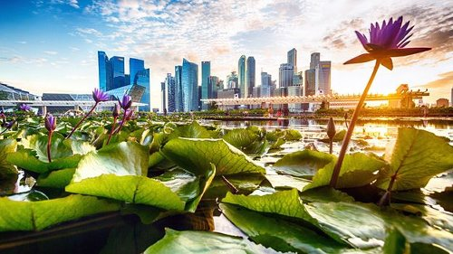 Singapore's endless pursuit of cleanliness