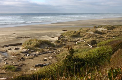 Waldport's Driftwood Beach Parking to Close for Oregon Coast Wave Energy Project Work