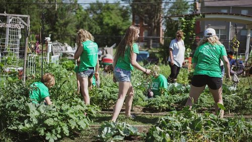 Why Starting a Community Garden is Worth It