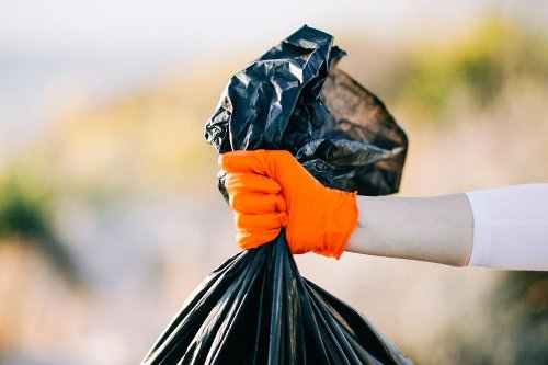 How to Organize a Successful and Thorough Outdoor Cleanup