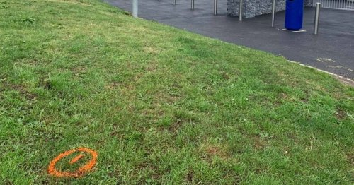 Dog poo spray painted as residents highlight issue