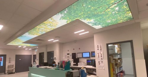 NI hospital welcomes new ICU environment for patients and staff