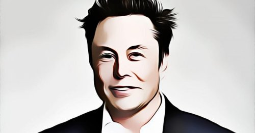 Elon Musk Responds To Benzinga Report: 'Lots Of' SpaceX And Tesla Workers Own Dogecoin — He Does Not Own Floki Nor Shiba Inu