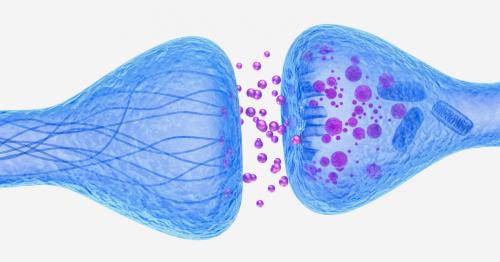 Alpha Cognition Addresses Unmet Needs for Patients with Neurodegenerative Diseases