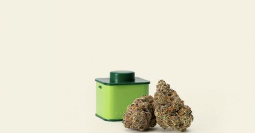 Seth Rogen, Evan Goldberg's Houseplant Launches Hybrid Cannabis Strain: Bomb Cyclone