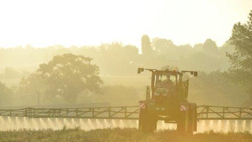 """""""C'est fou"""": le monde agricole embarrassé face à la flambée du prix des engrais"""