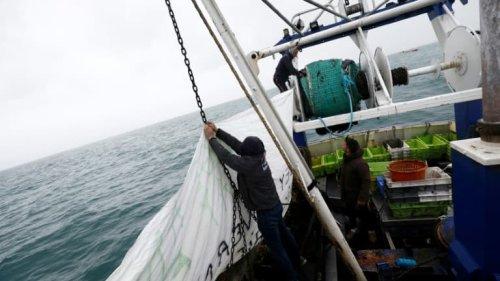 Pêche post-Brexit: Paris se prépare à annoncer des sanctions