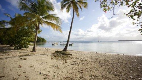 Un séisme de magnitude 5,1 secoue la Guadeloupe