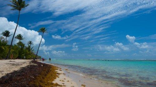 Annulations en cascade pour les vols à destination des territoires d'Outre-mer
