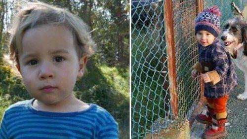 Disparu durant 35 heures, le petit Noah, 2 ans et demi, retrouvé sain et sauf au Portugal