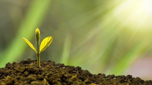 La gestion d'actifs à l'heure d'une performance durable et de convictions responsables