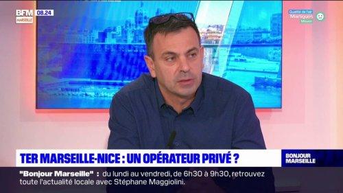 Provence-Alpes-Côte-d'Azur: la privatisation du TER Marseille-Nice va-t-elle profiter aux usagers?