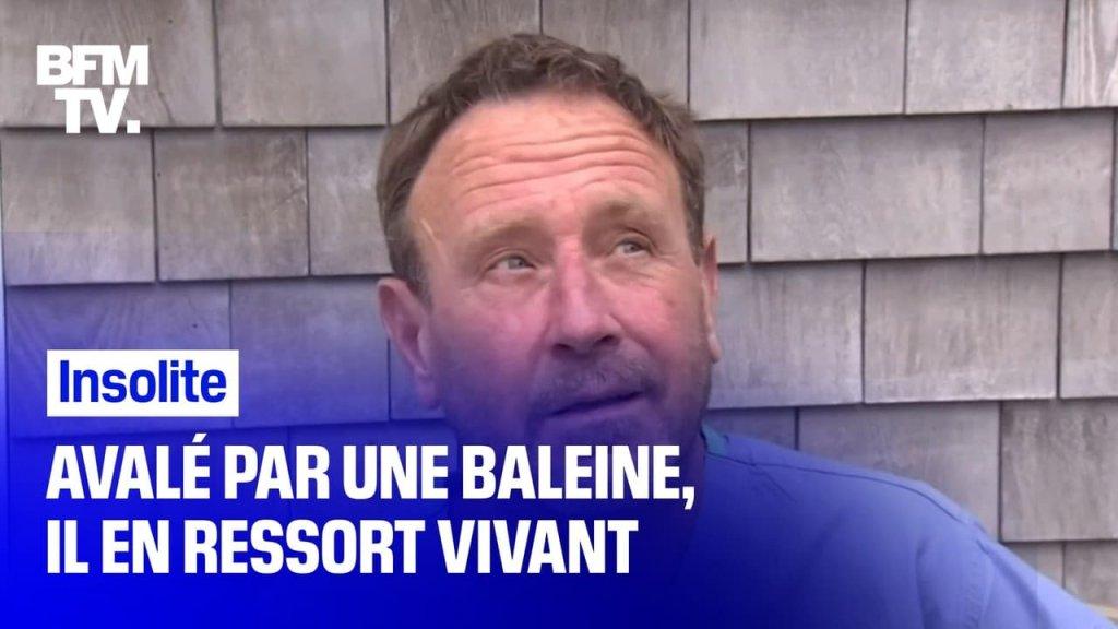 Société - cover