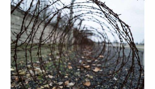 « Complicité de meurtre dans plus de 10.000 cas »: une ancienne secrétaire d'un camp de concentration face à la justice à 96 ans