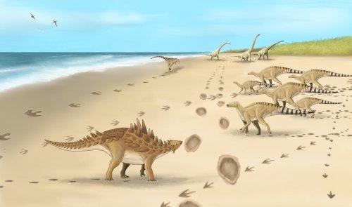 Footprints of last dinosaurs walked 110M years ago in UK found