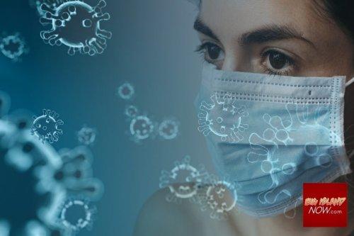 Big Island Active Virus Cases Surpass 300   Big Island Now