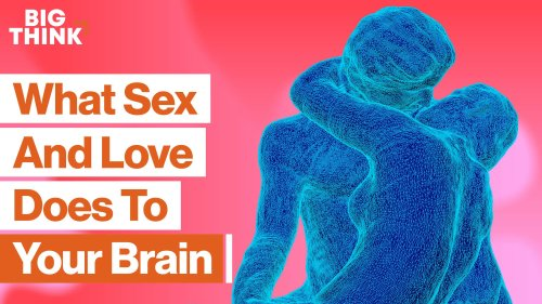The science of sex, love, attraction, and obsession