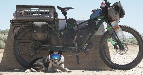Dogpacking 2.0: A Guide to Bikepacking with Your Dog - BIKEPACKING.com
