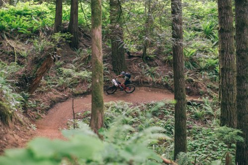Snowden or Dust, Vancouver Island - BIKEPACKING.com