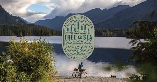 Tree to Sea Loop, Vancouver Island - BIKEPACKING.com