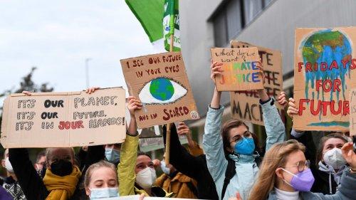 """""""Fridays for Future""""  gegen die Öko-Partei"""