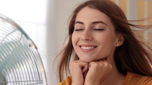 Abkühlung per Sprachkommando: Wie mache ich einen Ventilator smart?