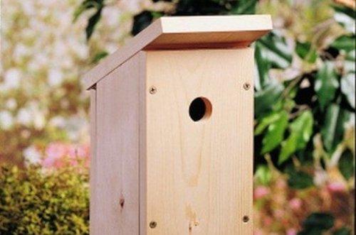 Build a One-Board DIY Birdhouse