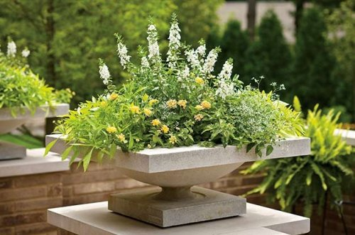 The 7 Do's and Don'ts of Garden Containers