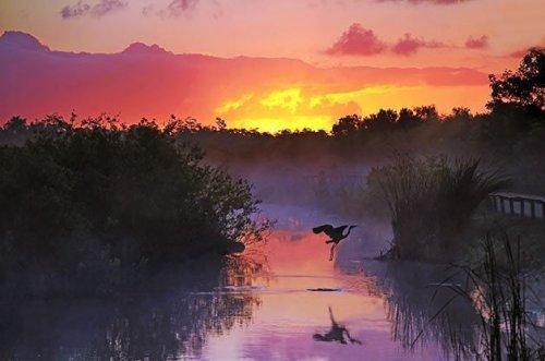 10 Spectacular National Park Birding Sites