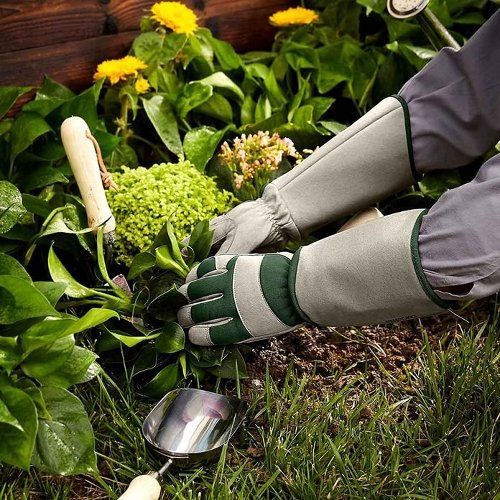 The Best Gardening Gloves for the Whole Family