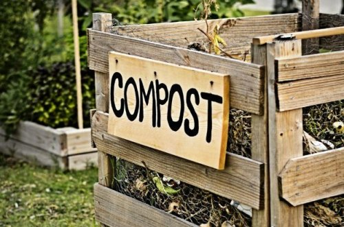 Compost Basics: How to Get Started with Composting