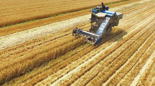 Miras kalan tarım arazilerinin satışında vergi ve harç alınmayacak