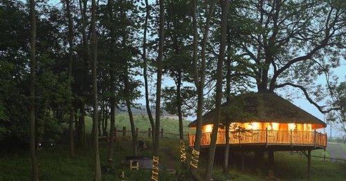 The 'hidden gem' treehouse that comes with its own hot tub you can hire