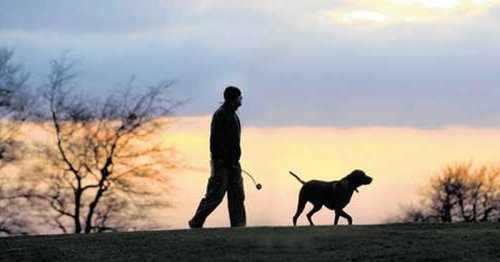 Dog walkers urged to beware after two suspicious incidents in 24 hours