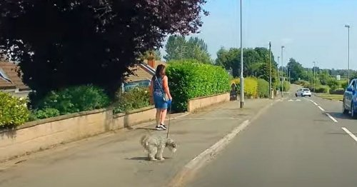 Watch as woman branded a 'cheeky cow' in dog poo row