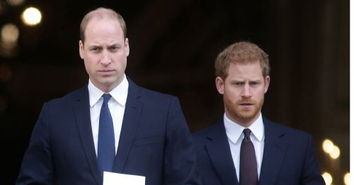 Prince Harry and William unite for Prince Diana's wedding dress exhibition