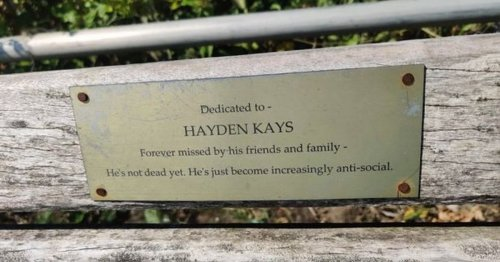 Man spots savage plaque on memorial bench and is left speechless