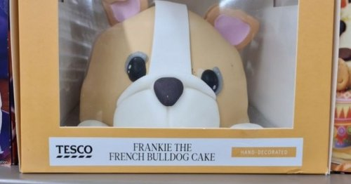 Vets are furious at Tesco over Frankie the French Bulldog cake