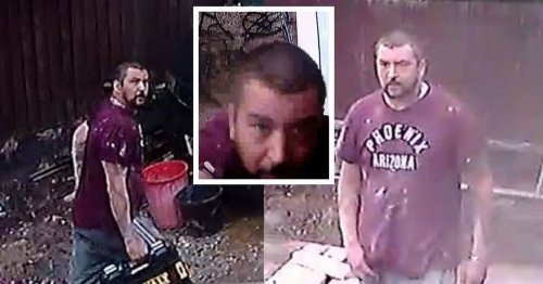 Police appeal after drill stolen in burglary