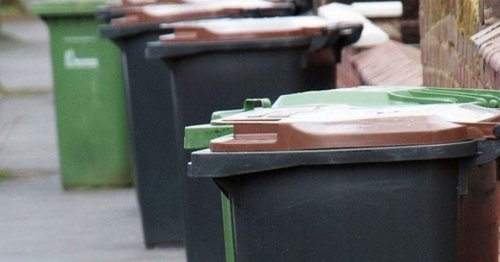 Compensation review as green bin collections re-start after big delay