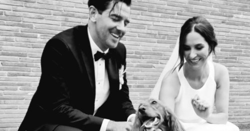 Bromsgrove pet wedding service's photos of dogs on the big day