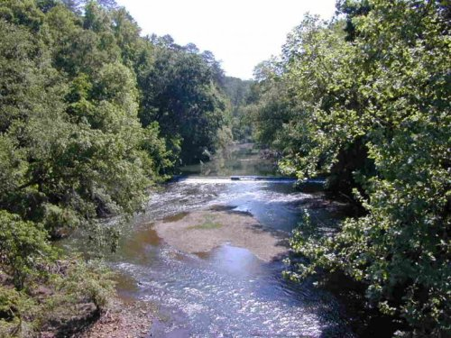 Environmental Groups Appeal Judge's Cahaba River Ruling to the Supreme Court