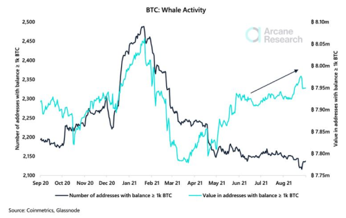Diamond Hands: Remaining Bitcoin Whales Keep On Buying The Dips