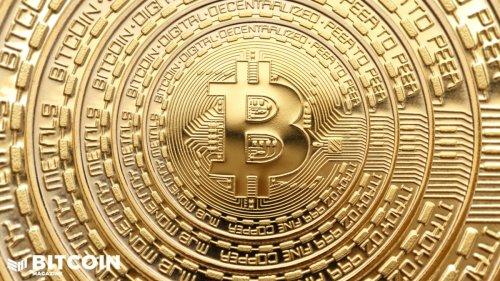 Bitcoin Information Theory: B.I.T.