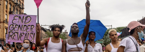 The scene from Brooklyn Museum, where thousands rallied for trans rights