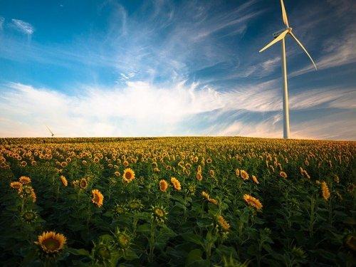Ökoenergie - Das große Geschäft (Teil 2) - Blackout News